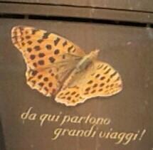 farfalla partono viaggi